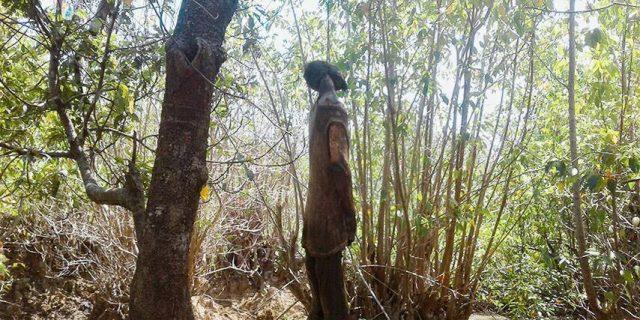 Seorang Lelaki ditemukan Tewas Tergantung di Sebuah Pohon